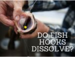 can fish dissolve hooks in their mouth