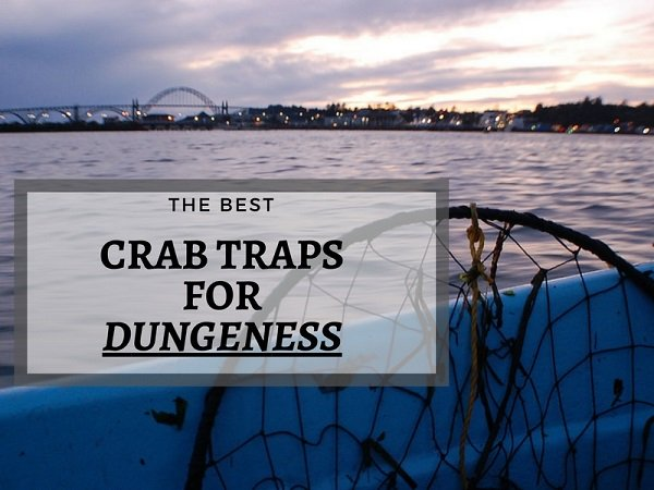 best crab trap for dungeness crab