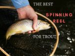 best spinning reels for trout fishing