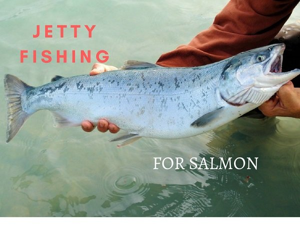how to catch salmon from jetty