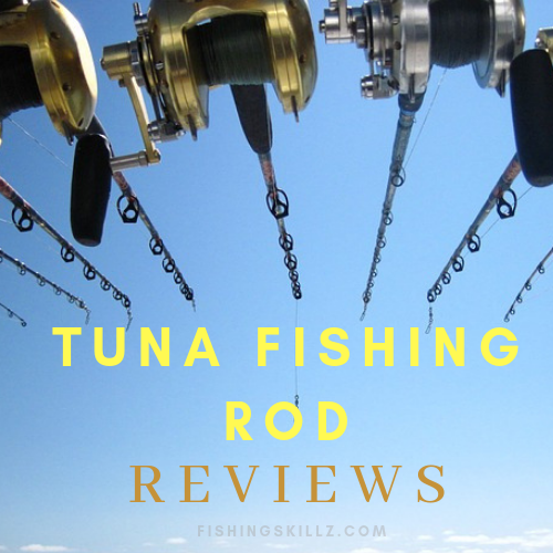 best fishing rods for tuna