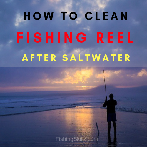 clean fishing reel after saltwater