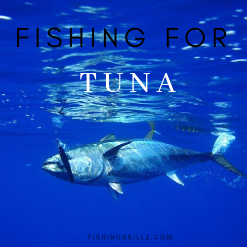 fishing for tuna