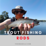 best Ultra light fishing rod for trout