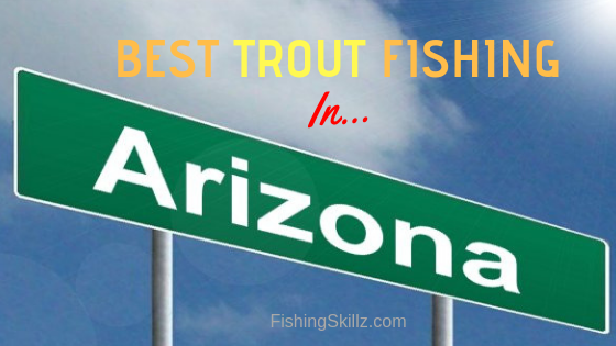 Top 10 TROUT Fishing Locations in Arizona: Fishing In