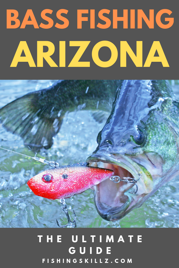 Best BASS Fishing in ARIZONA (Top 7 Hot Spots To Hit