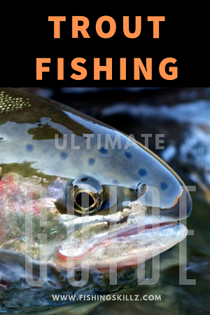 ultimate guide to trout fishing