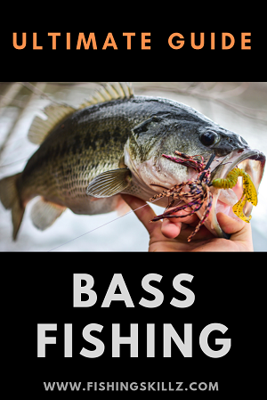 largemouth bass being held by the mouth