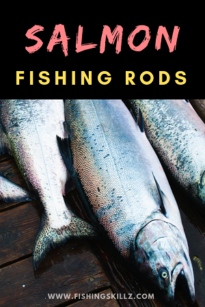 Your Guide To The Best SALMON FISHING RODS (Top 5 Reviews)
