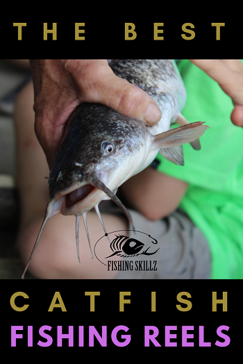 catfish held in persons hand