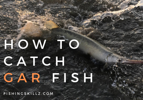 gar fishing tips and techniques