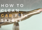 gar cleaning instructions step by step