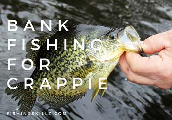 fishing tips for fishing for crappie from the bank