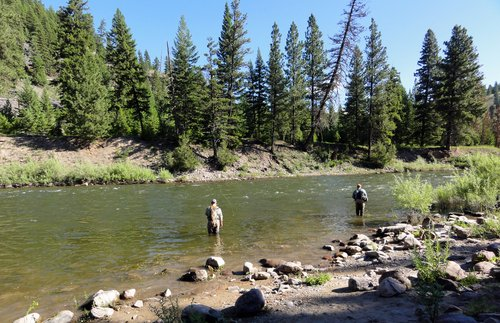 fly fishing blackfoot river montana