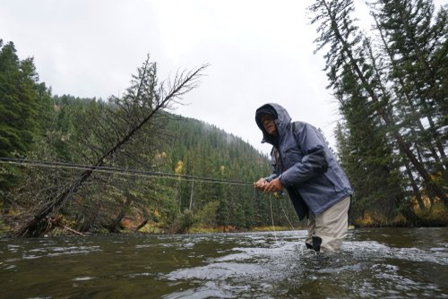 fly fishing trout gallatin river montana