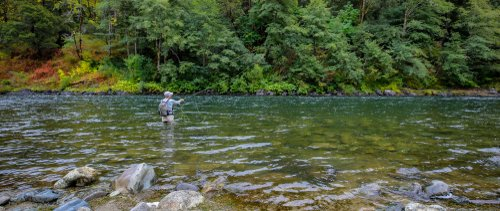 fly fishing in oregon river