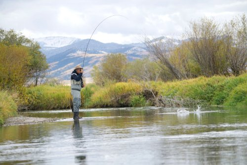 fly fishing the ruby river for trout in Montana