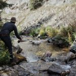 best fly rod combo for small streams