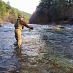 steelhead fly rod reviews