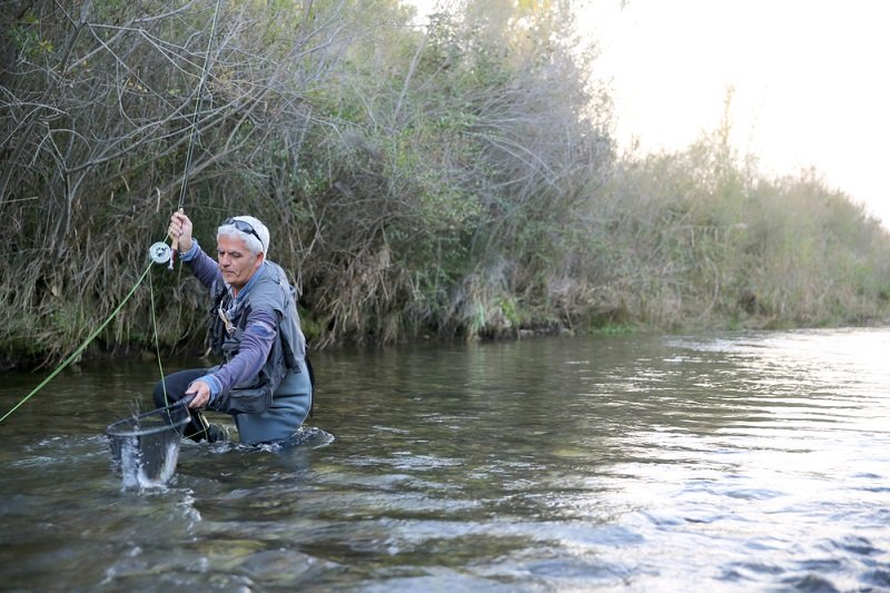man fly fishing for trout in stream