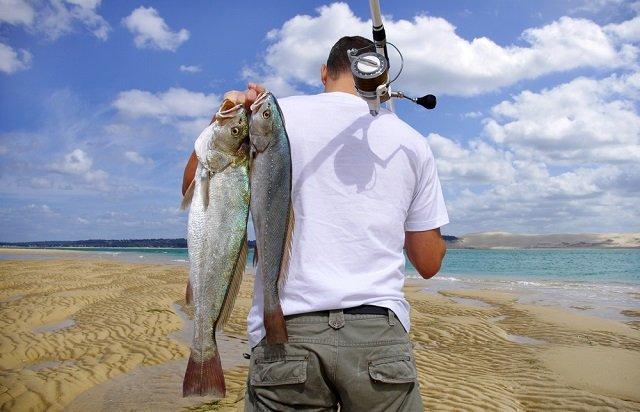 surf fishing with rod and reel combo
